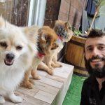תמונות באלו מלון בוטיק לכלבים (162)
